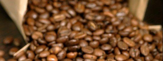 El Viejo kaffe